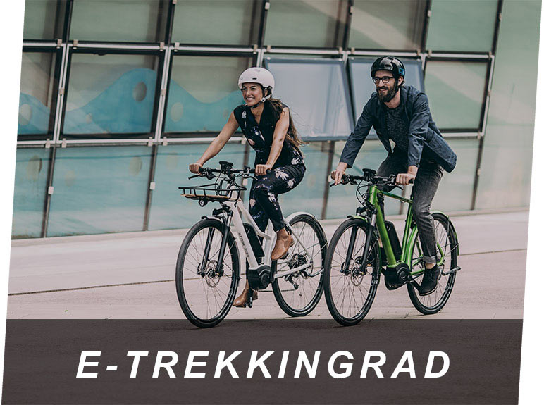 E-Trekkingrad & E-Bikes vom E-Bike Center Zeller in Passau