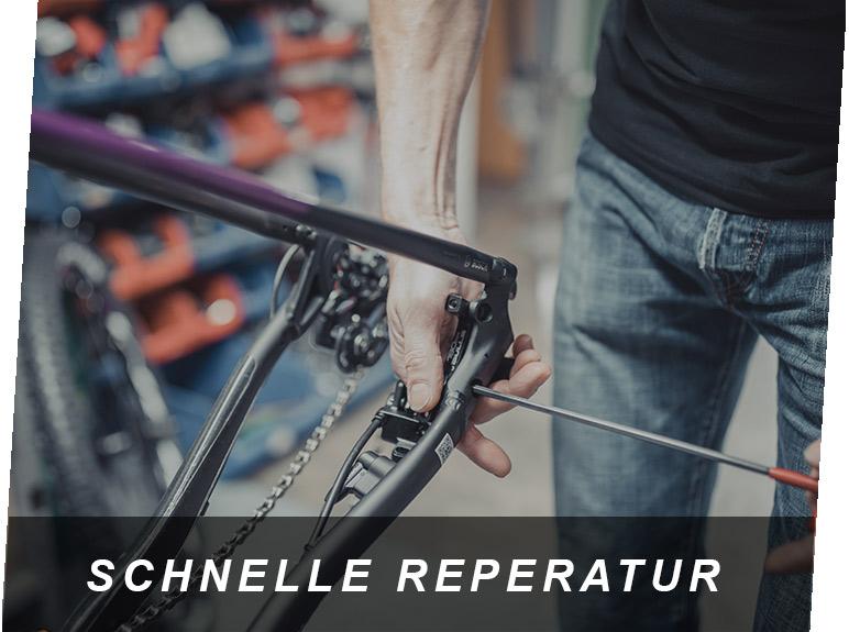 Schnelle Reparatur, ein E-Bike Service von Zeller in Passau